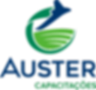 Logomarca Auster Capacitações vertical