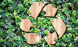 recycle-image-1.png