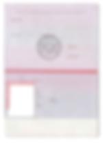 паспорт РФ бланк 1.png