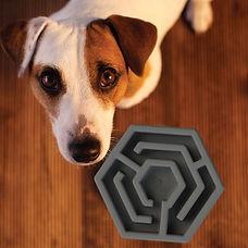 Hexa dog slow feeder_3b.jpg