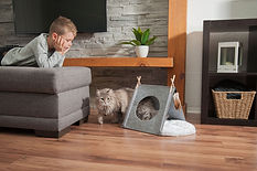 Tipi-for-cat-or-small-dog_4b.jpg
