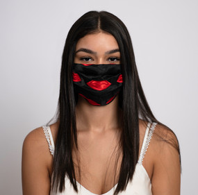 Organza Embroidered Mask