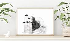Cute sleeping Panda_2a.jpg