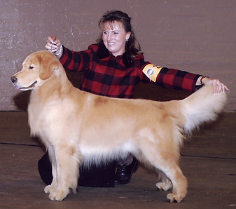 Oscar Best of Breed - Golden gate Kennel Club