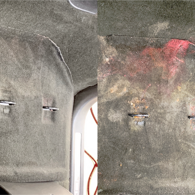 Hot Water Extraction Before/After