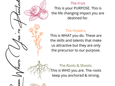 Bloom Where You're Planted: Finding Your Purpose.
