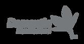 DNZ-Logo-Grey.png