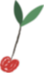Cherry דובדבן שבקצפת