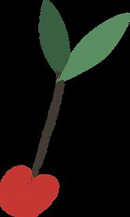 ciliegia