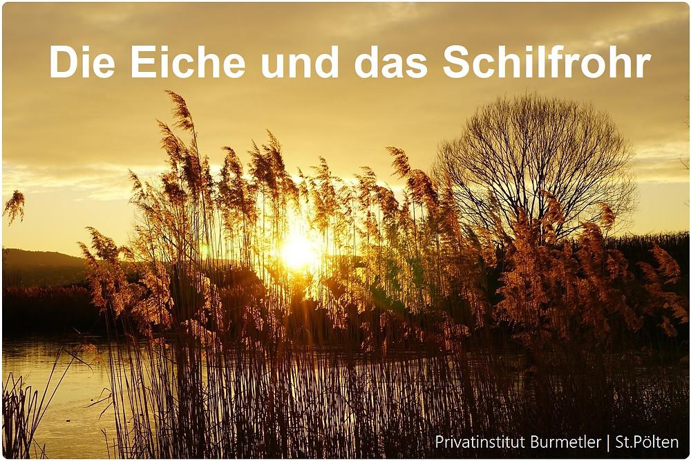 Resilienz | Ruhe | Gelassenheit | Privatinstitut Burmetler | St. Pölten