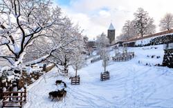 The-winter-of-Rapperswil-Castle-1-.jpg