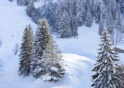 雪景8.jpg