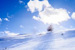 蓝天与雪.jpg
