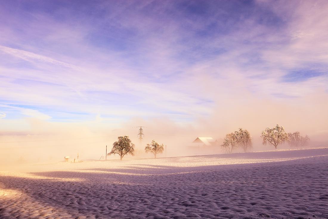 雾朦胧1.jpg