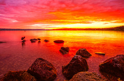 Rapperswil-sunset1.jpg