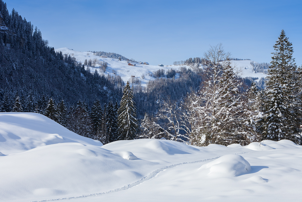雪景9.jpg