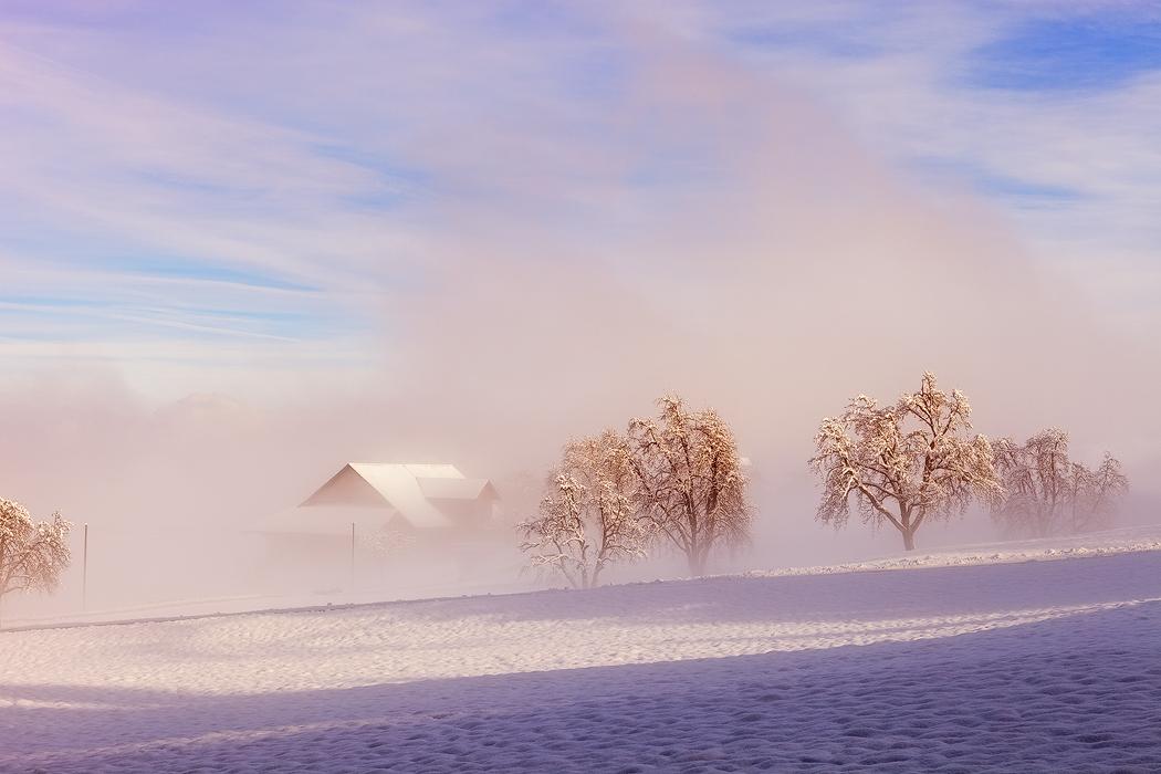 雾朦胧2.jpg