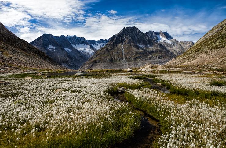 Aletsch-glacier5s.jpg