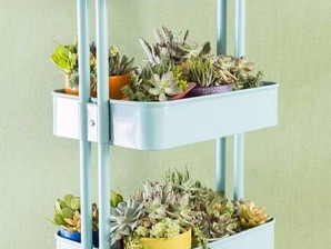 Formas criativas de ter um jardim em casa!