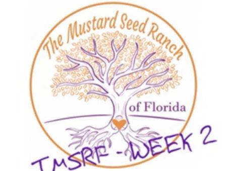 TMSRF - WEEK 2