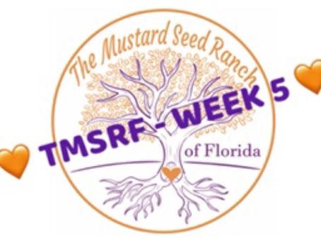 TMSRF - WEEK 5