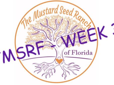 TMSRF - WEEK 3