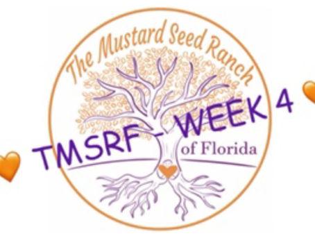 TMSRF - WEEK 4