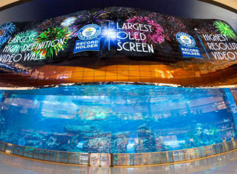 7 reasons why LED Screens are an essential investment.