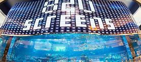 pulse-me-dubai-mall-media-facade .png