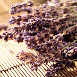 How to use Lavender Essential Oil to Relax:
