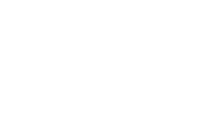 VXN_LOGO_STRIPED_WHITE.png