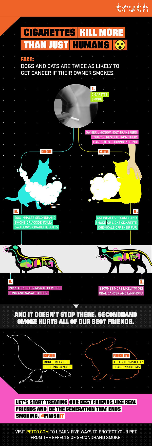 petco x truth all animals infographic 1.