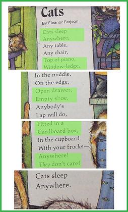cats poem.jpg