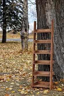 Maple ladder shelf