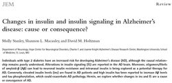Insulin, insulin signaling, and AD