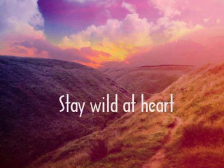 Staying wild