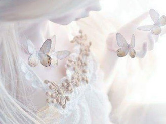 The dream of white butterflies