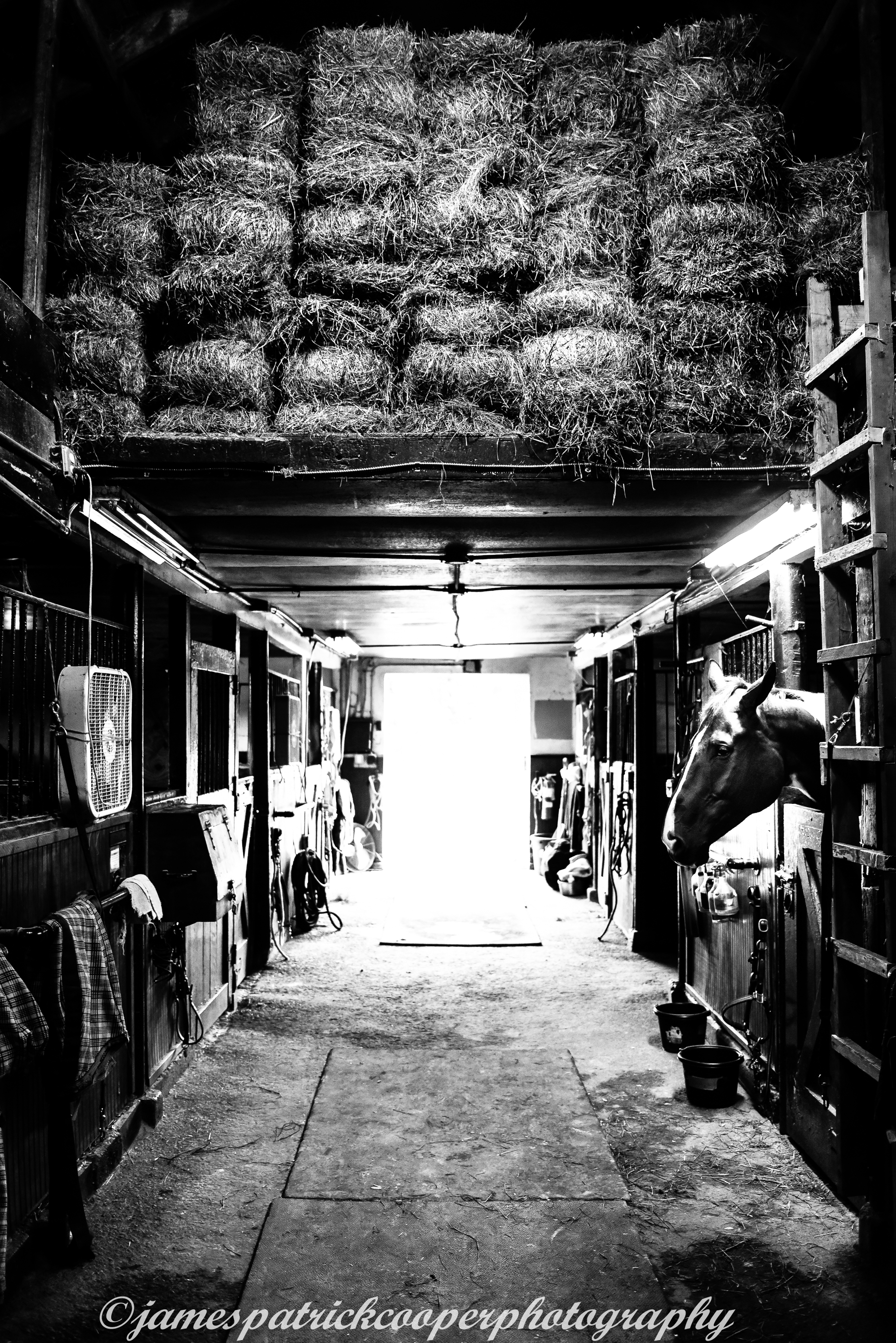 Horse Stable CT