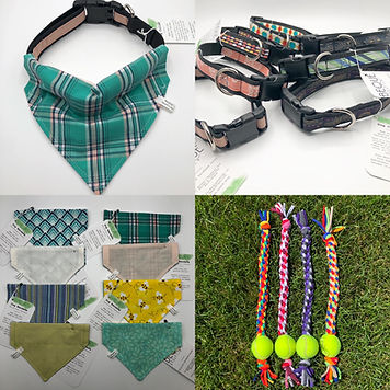 Dog Related Items.JPG