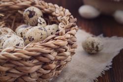 flower-food-produce-basket-close-egg-646