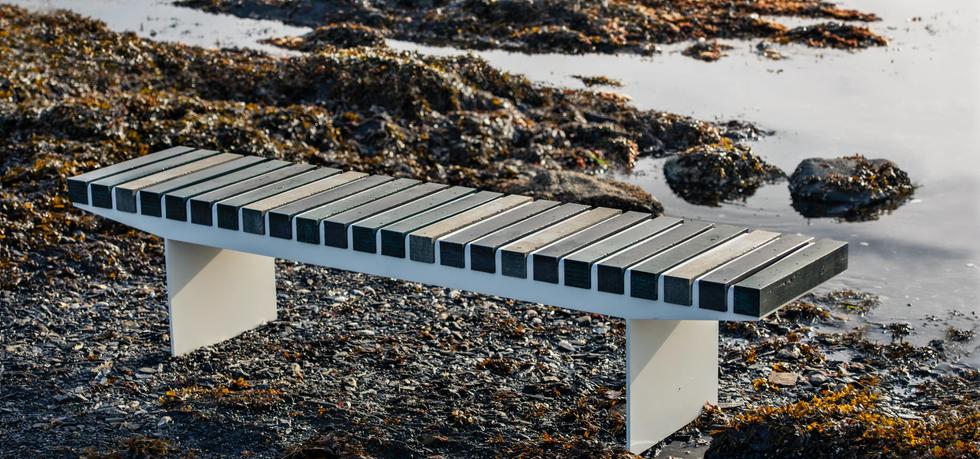 Vestre Coast Bench