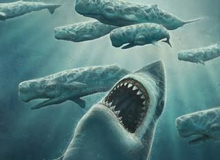 Do you believe Megalodons still exist?