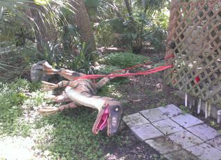 Securing the Dinosaur