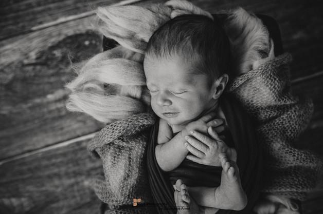 Newborn (2 von 4).jpg