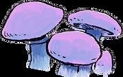 mushrooms 3.png