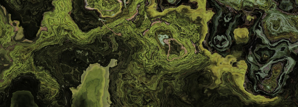 forest (Large).jpg
