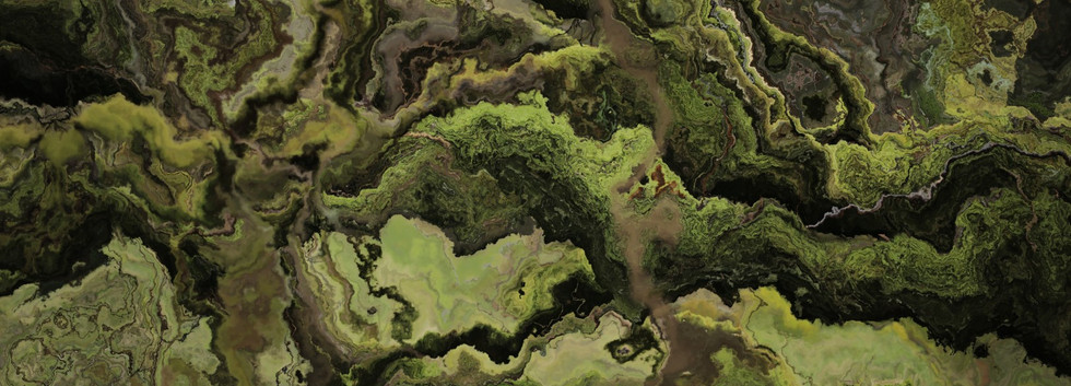 forest5 (Large).jpg