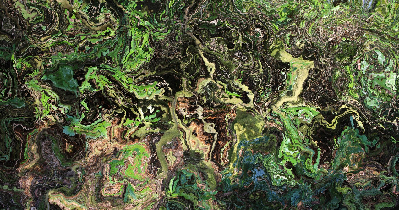 forest6 (Large).jpg