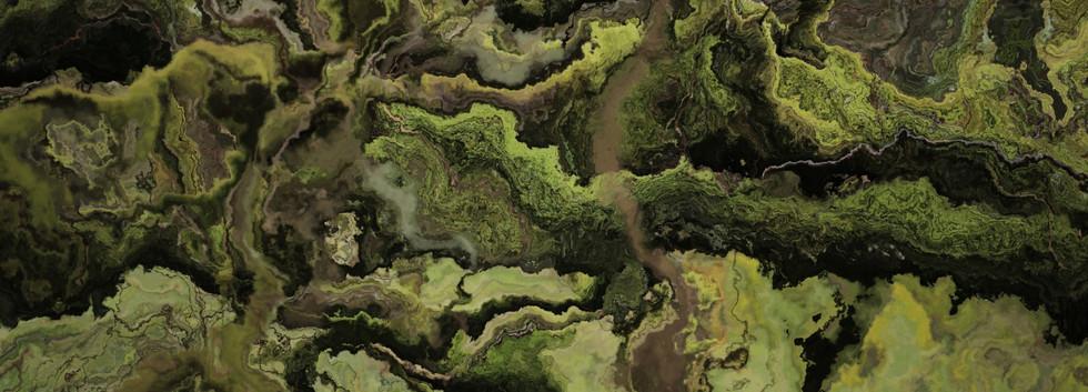 forest4 (Large).jpg