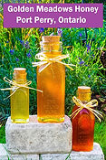 golden meadows honey - pvp.ca links w ti